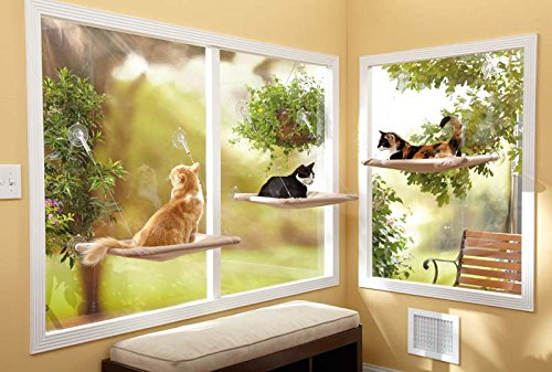 Meet The Sunny Seat Cat Window Bed A Cool Product That Helps You Provide Your Cat With A Place To Relax And Warm Up In The Sun