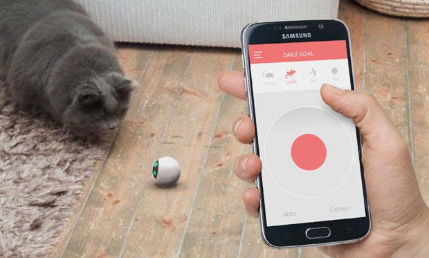 Rollycat Smart Robotic Ball For Cats Slash Pets