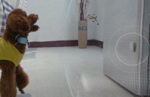 Pawaboo Cat Scratcher Lounge Slash Pets