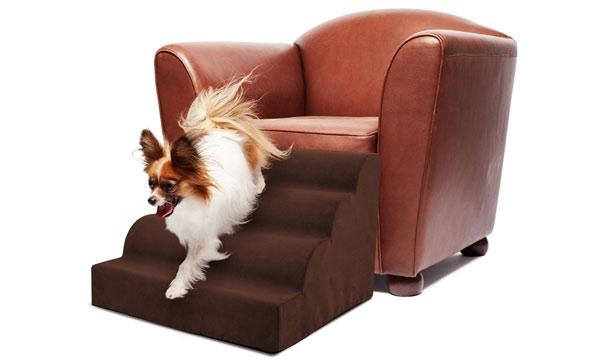 Precious Tails 4 Steps Pet Ramp Slash Pets