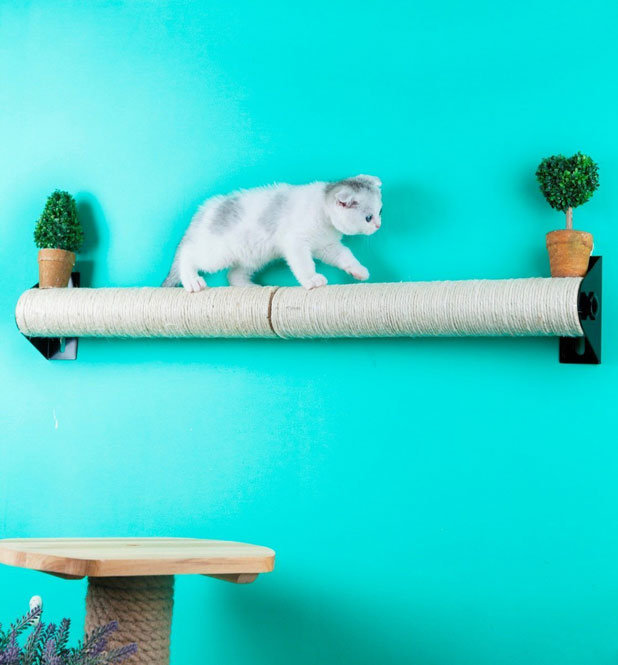 Cat Sisal Post Wall Amp Cage Mounted Scratching Post Slash