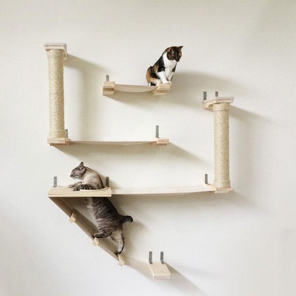The Roman Cat Fort Cat Hammock Climbing Activity Center