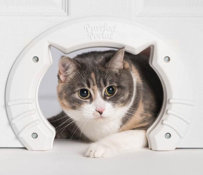 Purrfect Portal Cat Door Slash Pets
