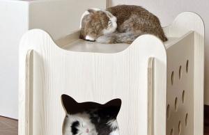cat house Archives - Slash Pets
