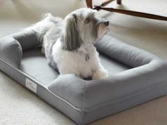 King Bed With Doggie Insert Space For You Amp Your Dog Slash Pets