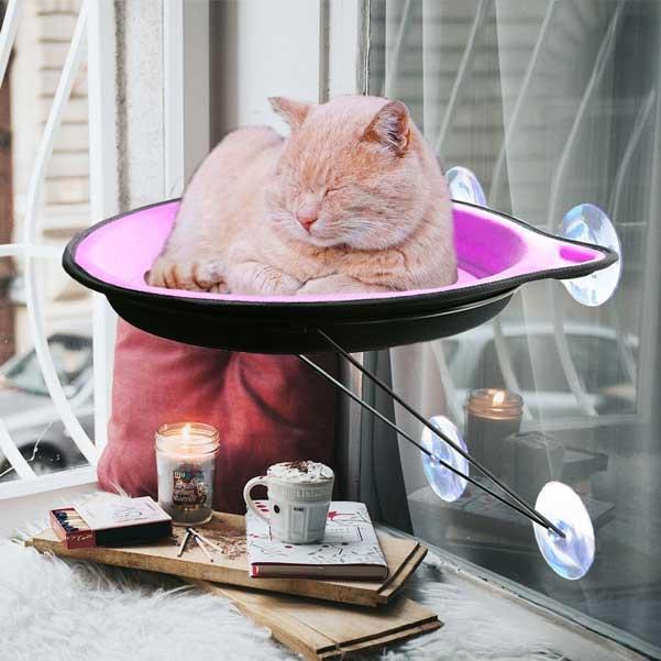 cat window hammock bed   slash pets  rh   slashpets
