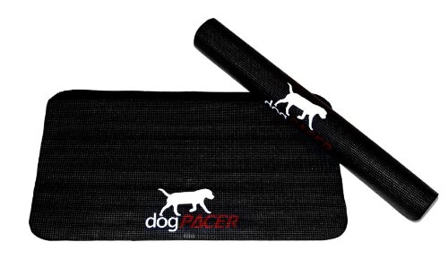 Dogpacer Dog Treadmill Mat Slash Pets