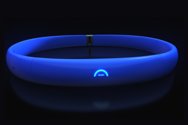 Arden Collar Pet Gps Tracker Slash Pets