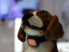 Ideanext Wifi Dog Camera Slash Pets