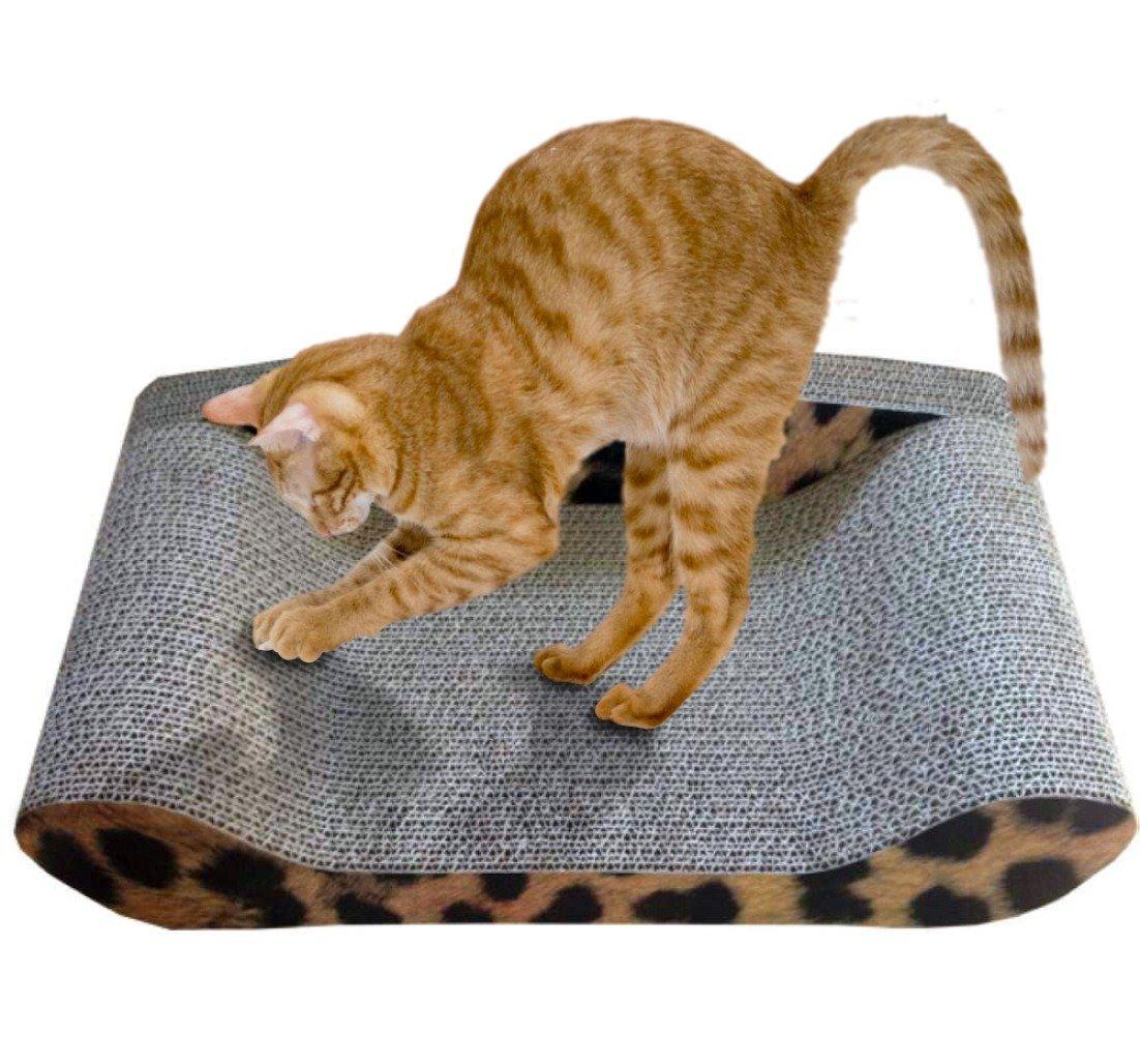 kitty sofa