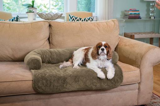 pet-furniture-cover