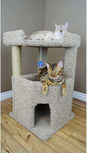 Kitty-Carpeted-Corner-Tower