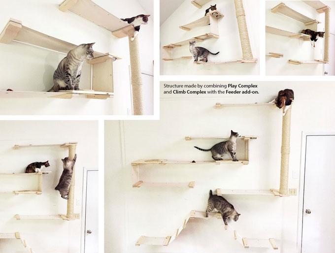 cat-mod-modular-climbing-system
