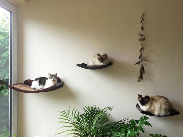 Art of Paws Cat Window Perch