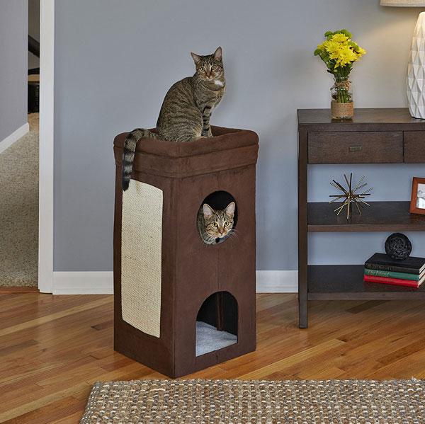 MidWest Curious Cat Cube - Slash Pets