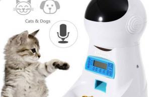 Beatrise 3 Story Cat Condo Slash Pets