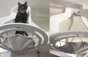 Kozy Kittysitter Cat House Slash Pets